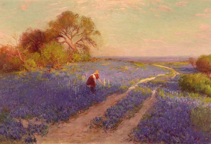 Bluebonnet Scene with Girl