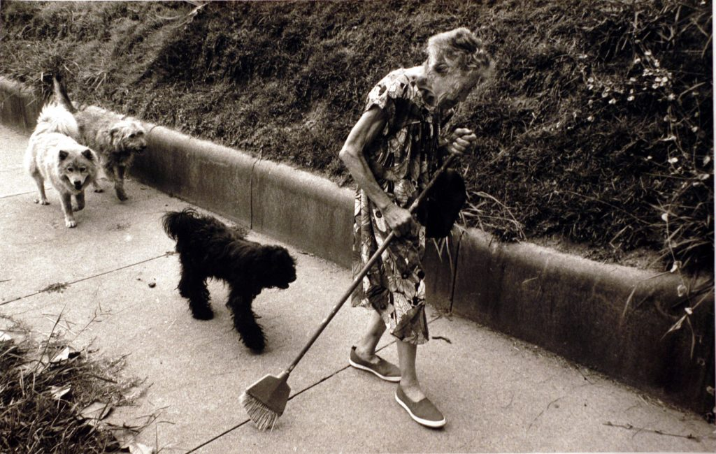 Walking with some of her stray dogs