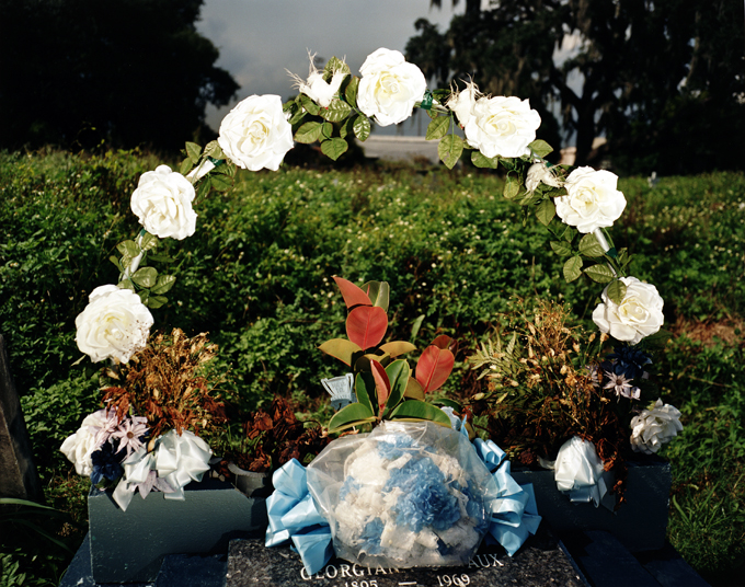 Arch of White Roses, Holt Cemetery, New Orleans, LA