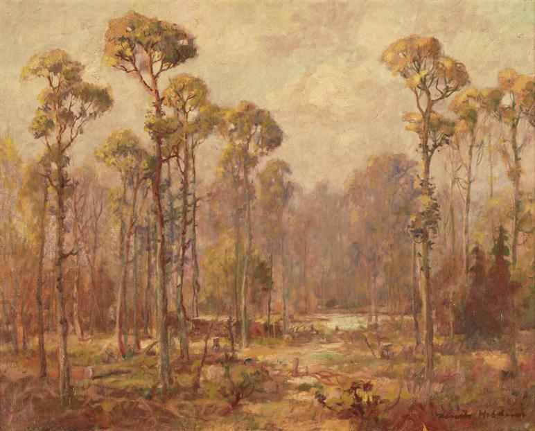 Piney Landscape
