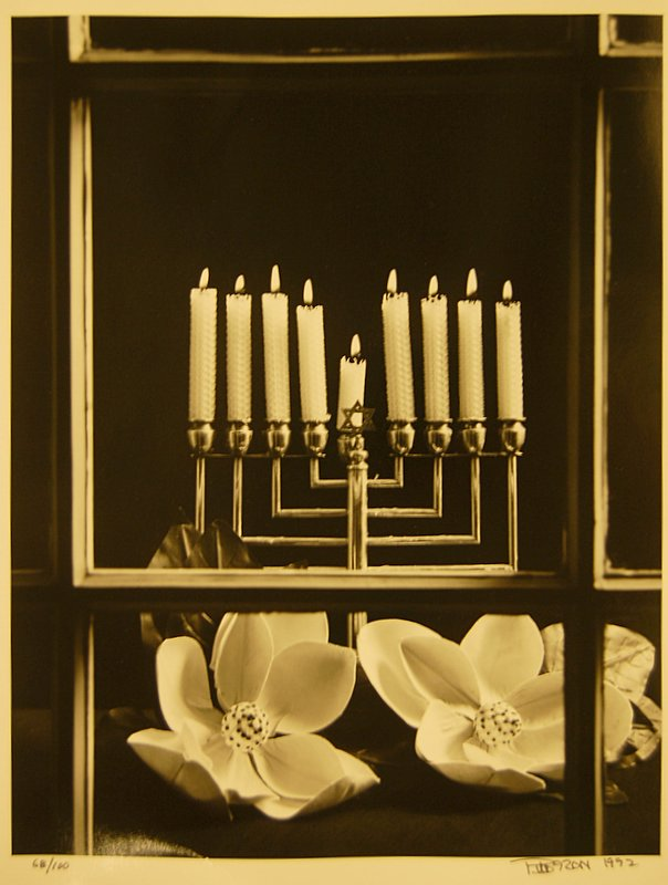 Menorah and Magnolias
