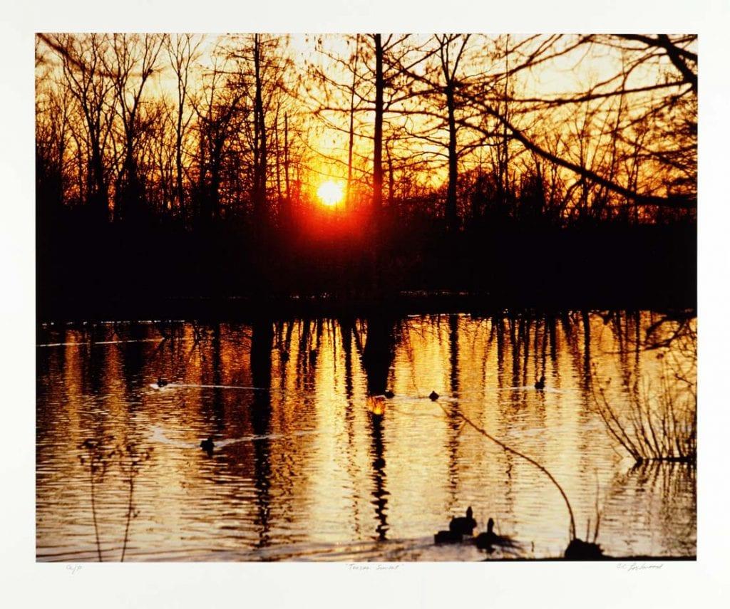 Tensas Sunset