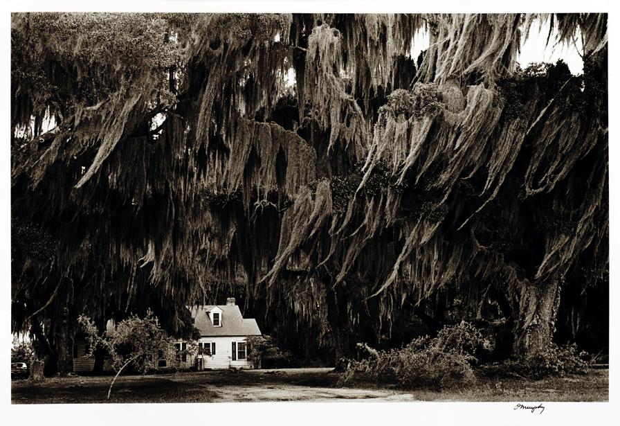 The Carolinas - Moss House