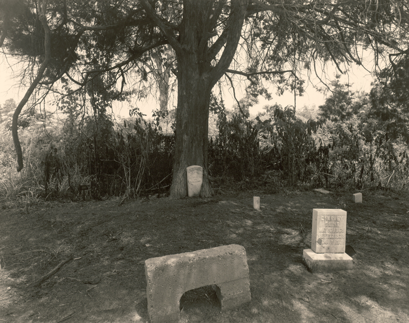 Cemetery, Morning Star, M.B. Church, Beulah MS 1989