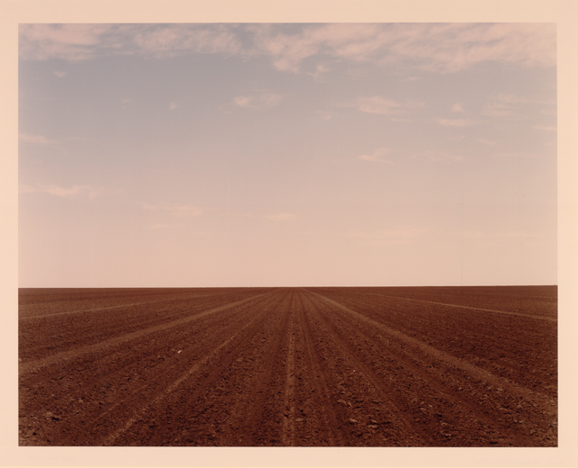Between Whiteface and Levelland, Texas