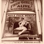 Mule Face Woman