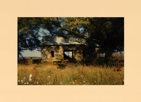 Abandoned house in field (View III), near Montgomery, Alabama