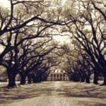 Oak Alley Plantation, 1983 River Road, LA