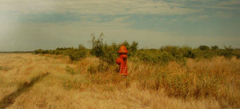 Hydrant, Near Holliday, Witchita Co., Texas