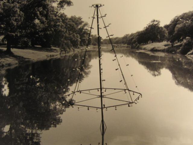 Bayou Light Tree, Talullah, Louisiana