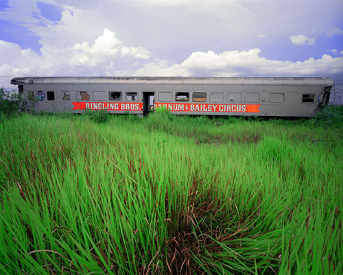 Florida Circus Train