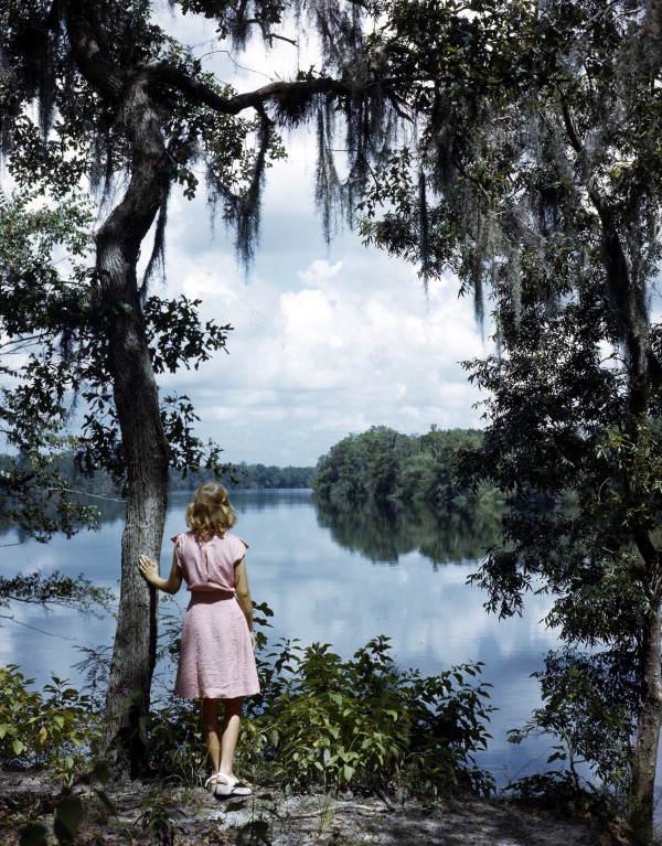 Lois Duncan Steinmetz, Admiring the Scenery of the Suwanee River, FL